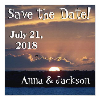 Beach Seagull Sunset Save Date Magnet Card