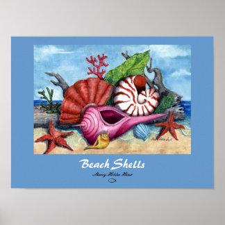 Beach Shells Print