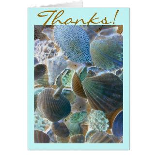 Beach Shells Thank You card