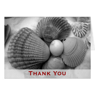 Beach Shells Thank You Note Card