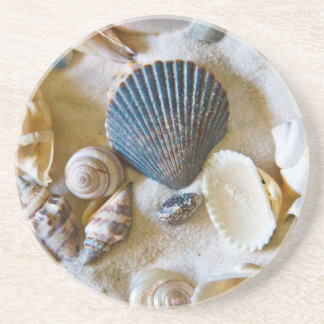 Beach Shells Theme #1 Drink Coasters