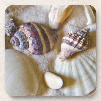 Beach Shells Theme #2 Beverage Coasters