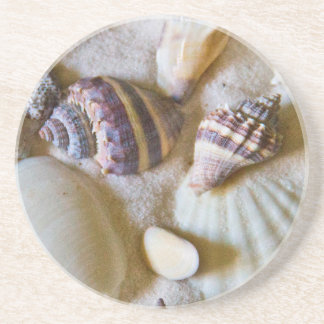Beach Shells Theme #2 Coaster
