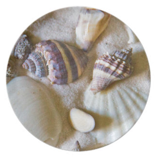 Beach Shells Theme #2 Plate
