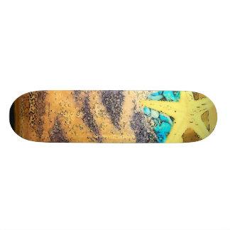 beach skate boards