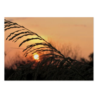Beach Sunset In Florida - ACEO 15 Business Card