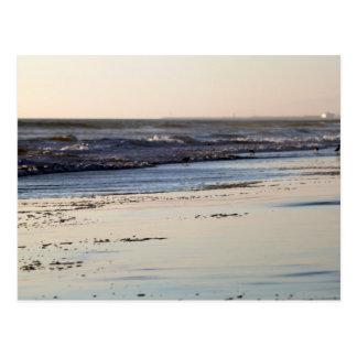 Beach Sunset Ormond Beach Postcard