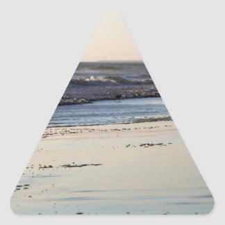 Beach Sunset Ormond Beach Triangle Sticker