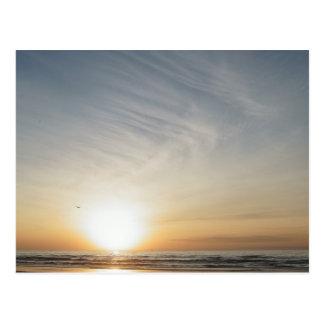 Beach Sunset Sunrise Celebration Blank Postcard