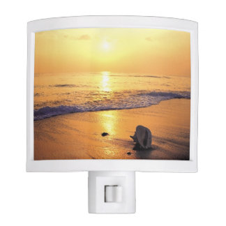 Beach Sunset Sunrise Ocean Water Night Lites