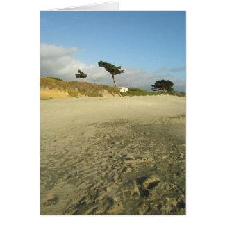 Beach Tree Card