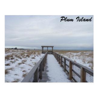 Beach Walkway Postcard