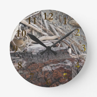 beach wood new zealand aotearoa round clock