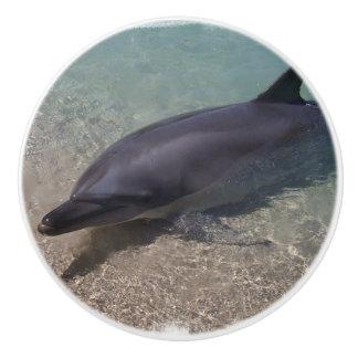 Beached Dolphin Ceramic Knob