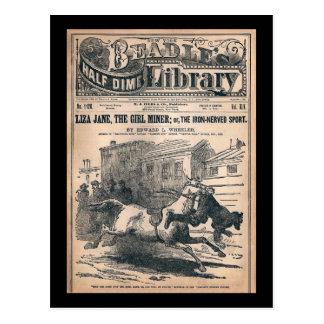 Beadles Half Dime Library No. 1120 1901 Postcard
