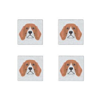 Beagle01_01_B_Quadrat.ai Stone Magnets