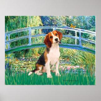 Beagle1 - Lily Pond Bridge Poster