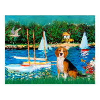 Beagle 1 - Sailboats Postcard