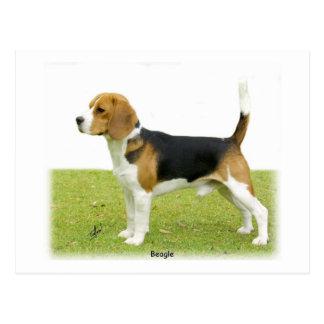Beagle 9J27D-02 Postcard