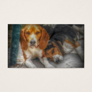 Beagle Brothers Business Card