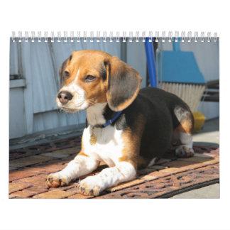 Beagle Calander Calendars