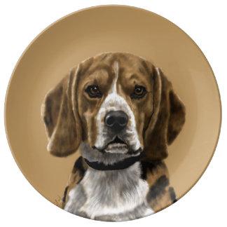 Beagle called Jones Plate