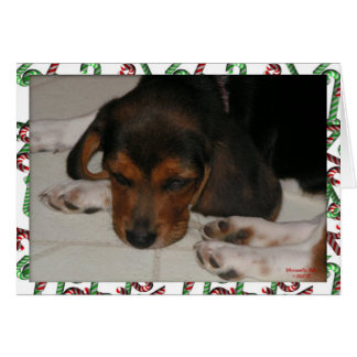 Beagle Christmas Card (Sleepy)