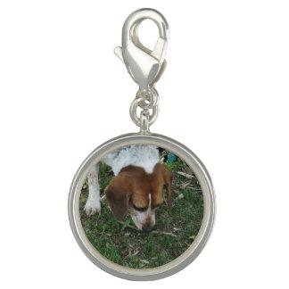 Beagle Custom Charm