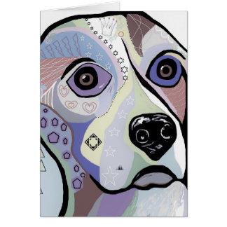 Beagle DENIM Colors Card