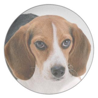"""""""Beagle"""" design kitchenware Plate"""