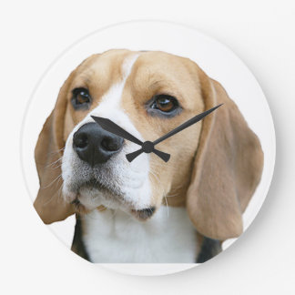 """Beagle"" design wall clocks"