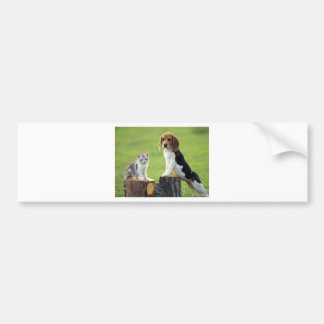 Beagle Dog And Grey Tabby Kitten Bumper Sticker