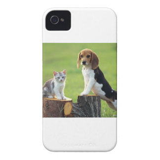 Beagle Dog And Grey Tabby Kitten Case-Mate iPhone 4 Cases