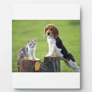 Beagle Dog And Grey Tabby Kitten Plaque