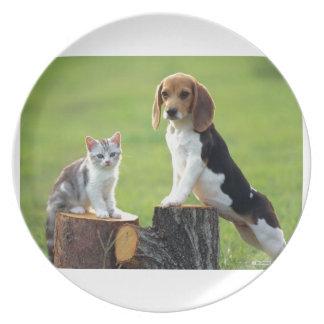 Beagle Dog And Grey Tabby Kitten Plate