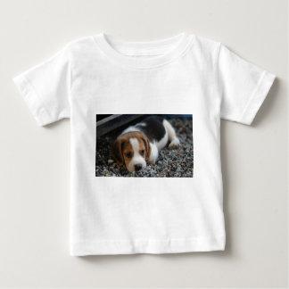 Beagle Dog Close Up Baby T-Shirt