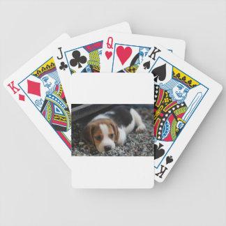 Beagle Dog Close Up Bicycle Playing Cards