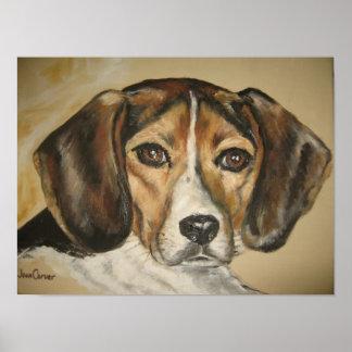 Beagle - Dog Portrait on Canvas Poster