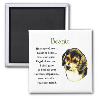 Beagle Gifts Magnet