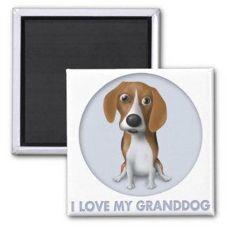 Beagle Granddog Magnets