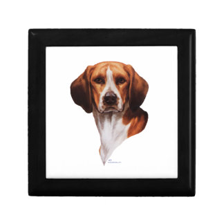 Beagle Head Study Gift Box