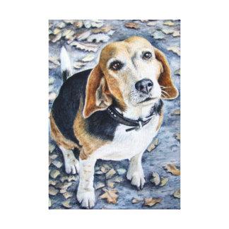 Beagle in Autumn Canvas Print
