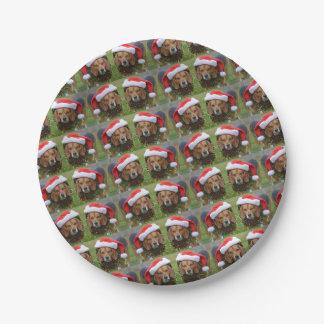 Beagle In Santa Hat & Christmas Garland Paper Plate