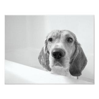 "Beagle in the Bathtub 4.25"" X 5.5"" Invitation Card"
