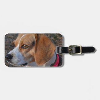 Beagle In the Morning Luggage Tag