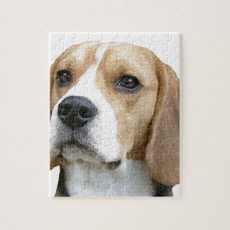 beagle jigsaw puzzle
