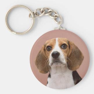 Beagle Keychain