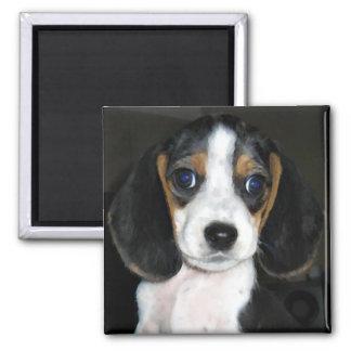 Beagle Magnet 2