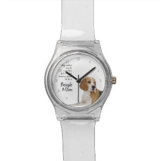 Beagle Mom Watch