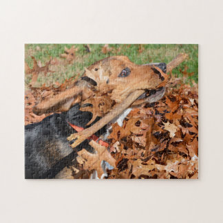 Beagle Playing With Stick In The Leaves Jigsaw Puzzle